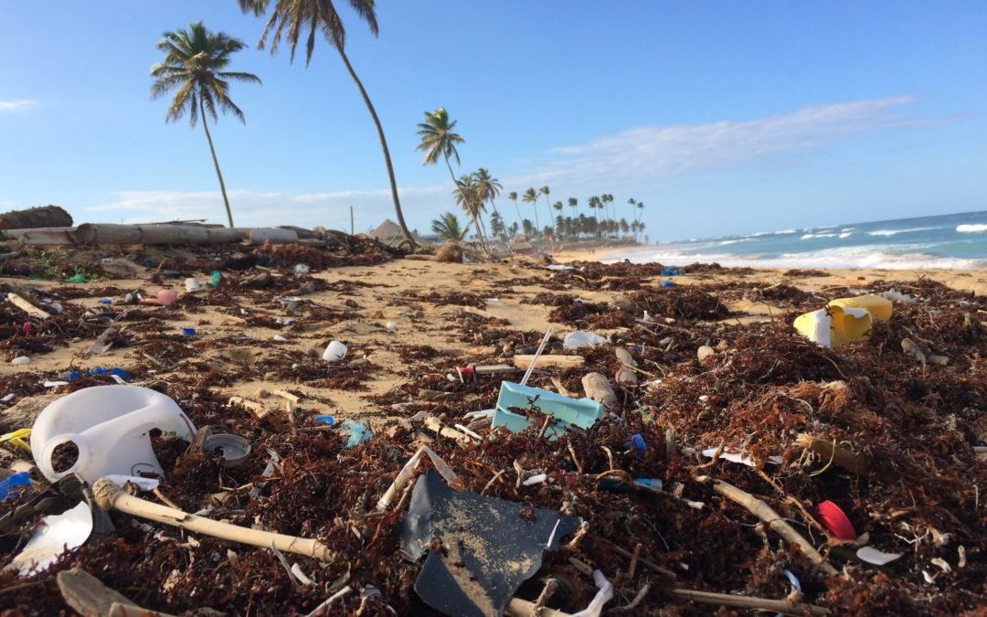 Reduce your participation in the tsunami of plastic rising into the global ocean!