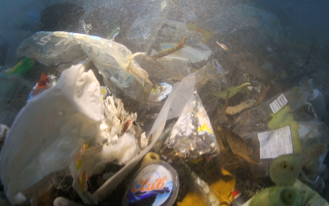 Do you know how much plastic waste is dumped into the ocean?
